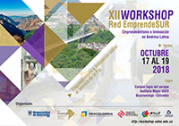 XII Workshop EmprendeSUR